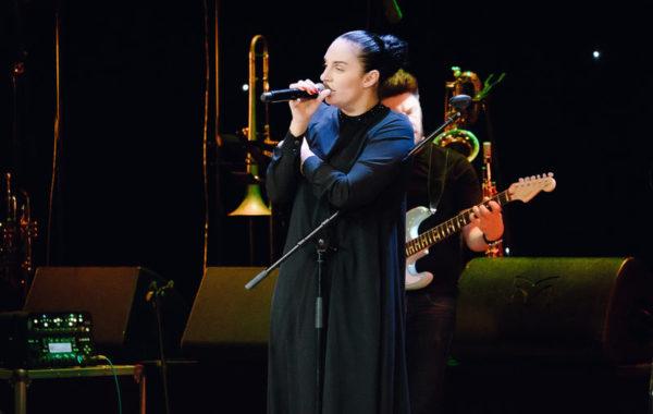 Концерт Елены Ваенги 17.10.2018г. (16+)